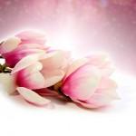 flowers_121