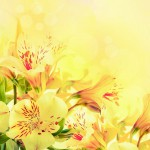 flowers_127