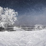 landscape_037