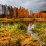 landscape_132