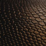 texture_15